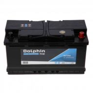 Batterie Dolphin First 95A
