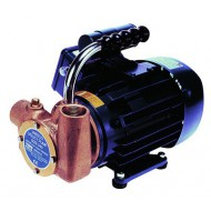 Pompe multi-usage JABSCO Utility 53040